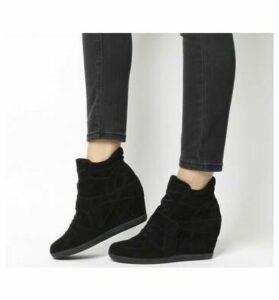 Ash Bowie Hi Top Wedge Sneaker BLACK SUEDE