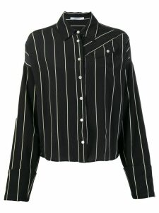Derek Lam 10 Crosby Long Sleeve Pinstripped Silk Button-Down Shirt