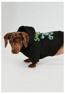 Black Dragon Back Graphic Dog Hoodie, Black