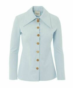 Pointed Collar Fitted Shirt