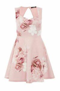 Petite Pink Floral Skater Dress