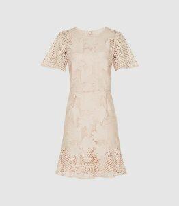 Reiss Damara - Lace Mini Dress in Pale Pink, Womens, Size 18