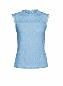 Womens Petite Blue Lace Jersey Top, Blue